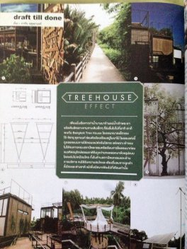 Green hotel :: Bangkok Tree House