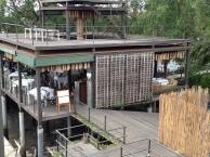 Bangkok Tree House